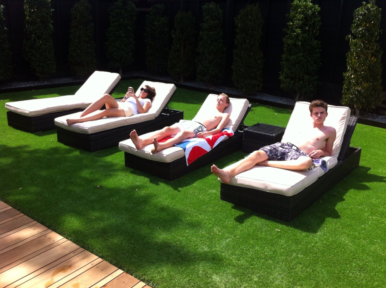Artificial Grass Eligrass Platinum Price Per 1m2 Select Quantity Required Call For A Free Sample